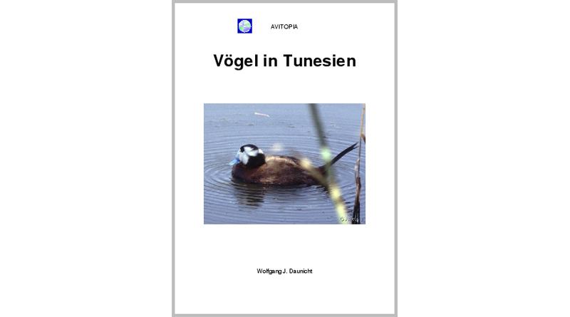 AVITOPIA - Vögel in Tunesien - von Wolfgang Daunicht (Nur als Kindle E-Book)